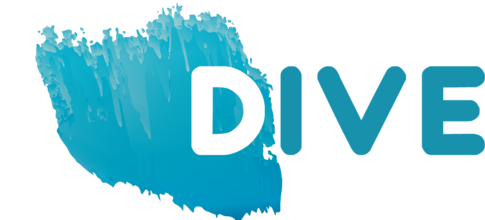 DIVE - Diversity in Pan-European Networks (2017-2019)